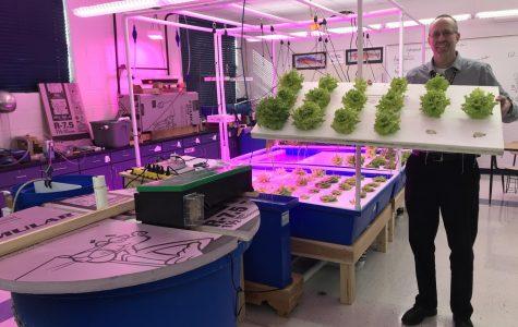 Fish Tanks Provide Fertilizer for Growing Vegetables